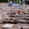 México pasa la marca de los 51.000 muertos por covid-19
