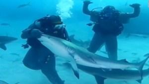 Mira cómo Mike Tyson se asusta con tiburones