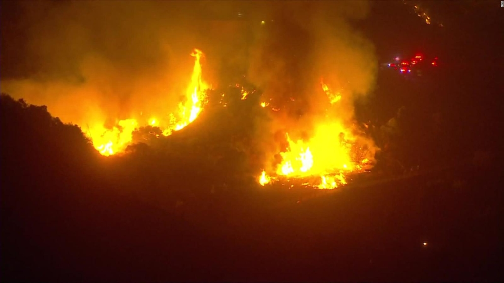 Incendios forestales destruyen bosques de EE.UU.