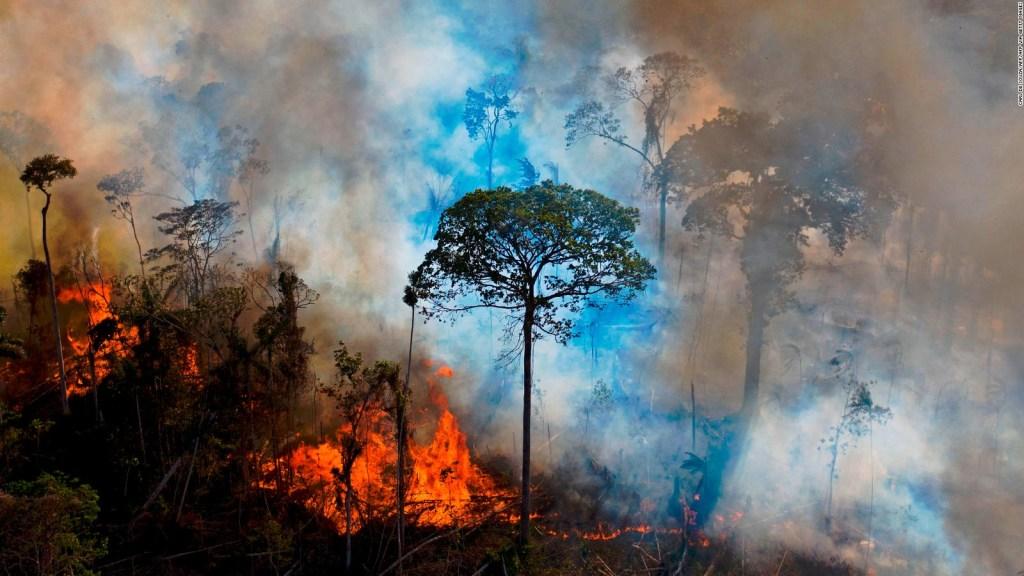 Los incendios en el Amazonas podrían ser peores este año