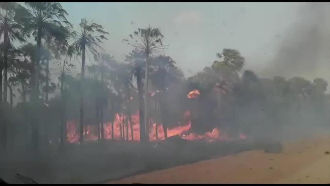 Paraguay sufre las consecuencias de la sequía extrema