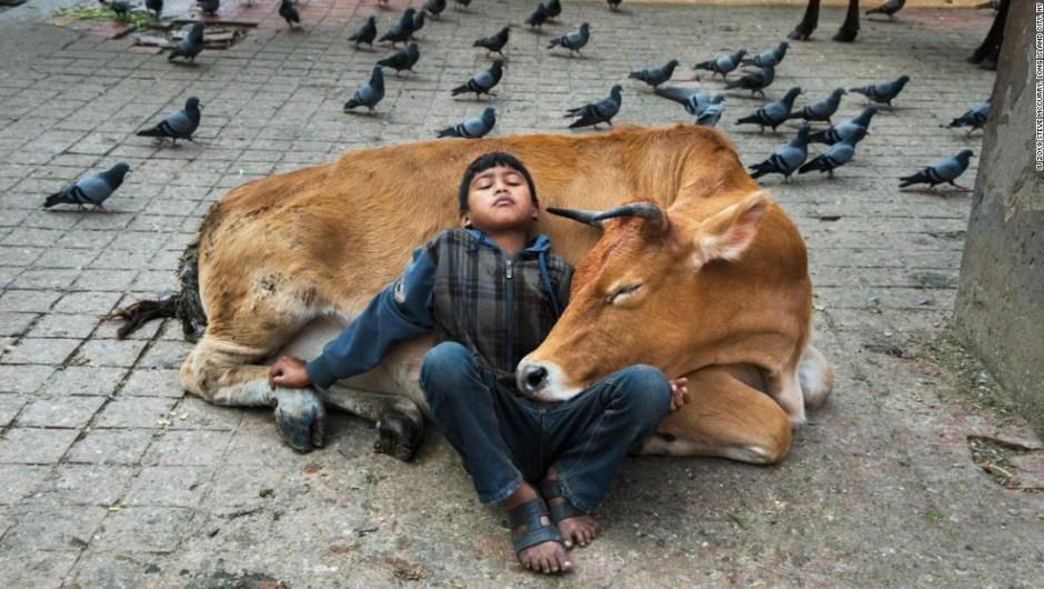 Día Mundial de la Fotografía: 5 de las mejores series fotográficas del año