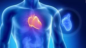 Vida sexual tras infarto aumenta esperanza de vida