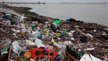 """Científicos mejoran """"superenzima"""" que degrada plástico"""