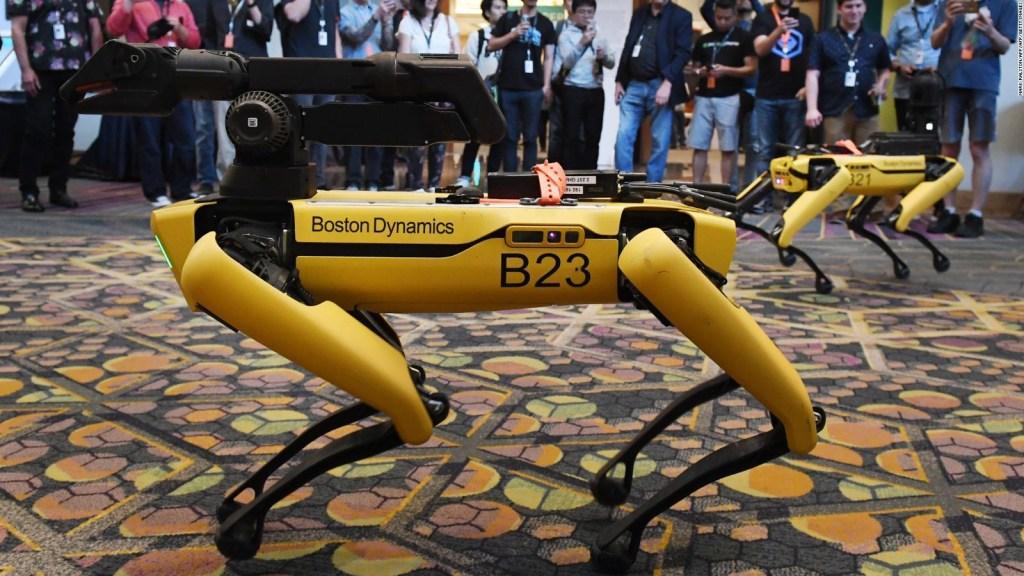 """Captan en cámara al """"perro"""" robot mientras paseaba"""