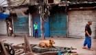 5 cosas: India, el segundo país con más casos de covid-19