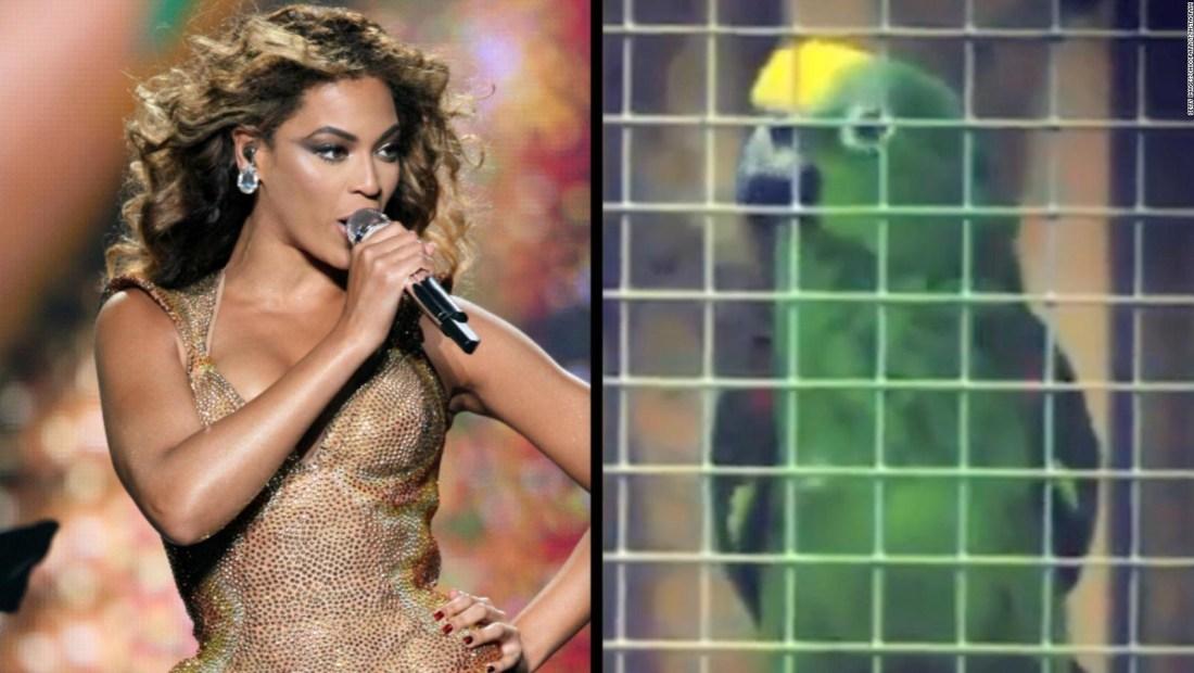 Loro cautiva con su interpretación de un éxito de Beyoncé