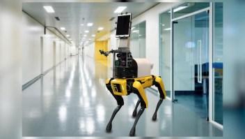 Investigadores crean robot enfermero para covid-19