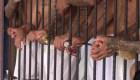 Maras encarcelados en El Salvador, captura de video gubernamental