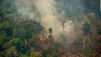 Decenas de miles de incendios en el Amazonas están llevando a la región a un punto donde no podrá producir suficiente lluvia para sostenerse