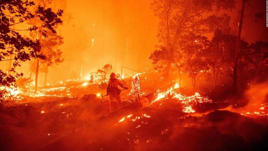 Los 5 países con más incendios forestales actualmente
