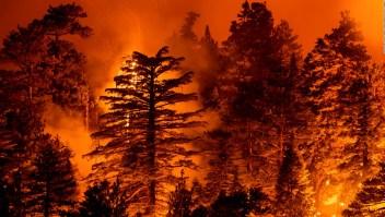 Incendios en la costa oeste de EE.UU.: un mes de infierno