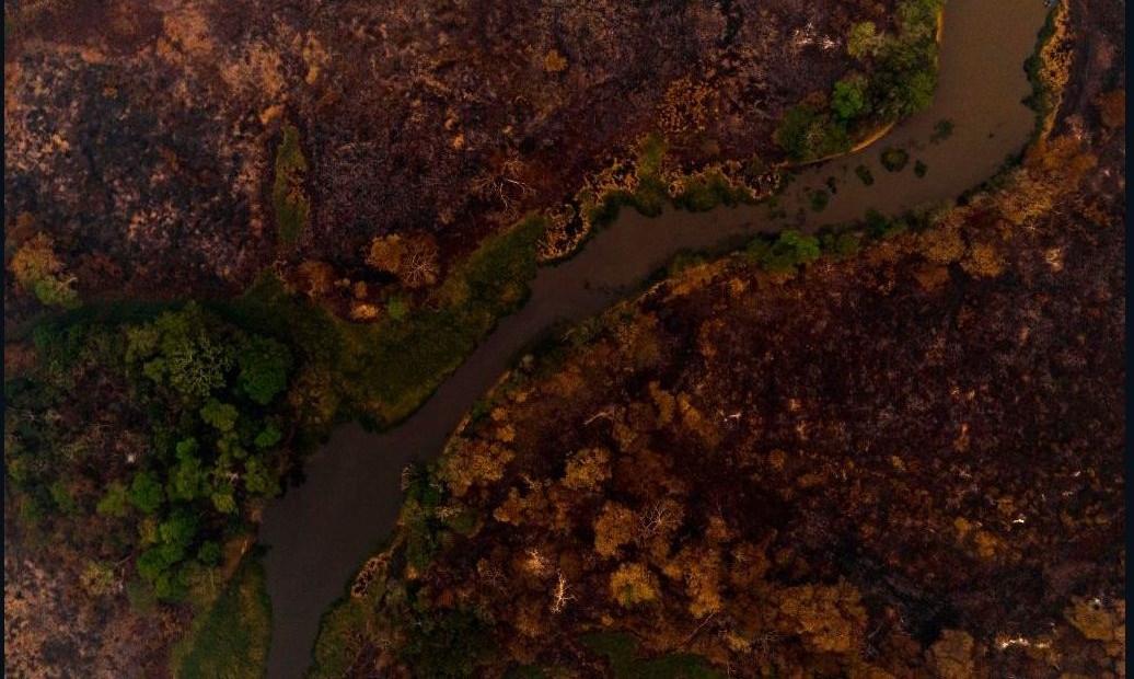 Incendios arrasan el Pantanal, el humedal más grande del mundo