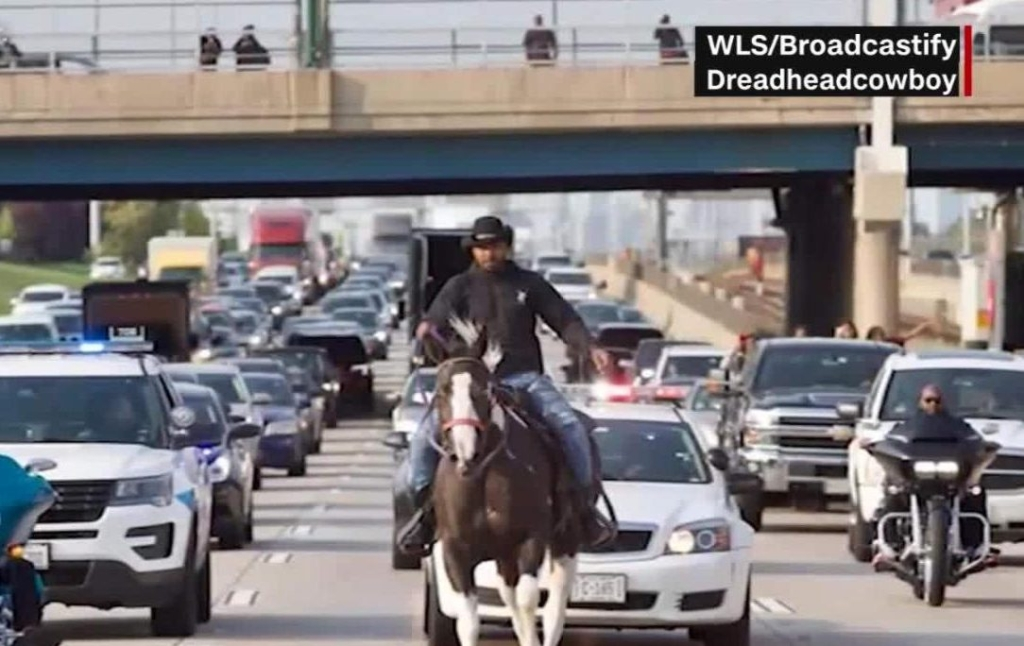 Chicago: detienen a vaquero que cabalgaba por autopista