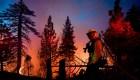 Incendios forestales alcanzan cifras récord en 2020