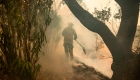 5 cosas: Incendios consumen más de 18.000 hectáreas