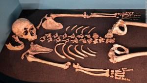 genes coronavirus neandertales
