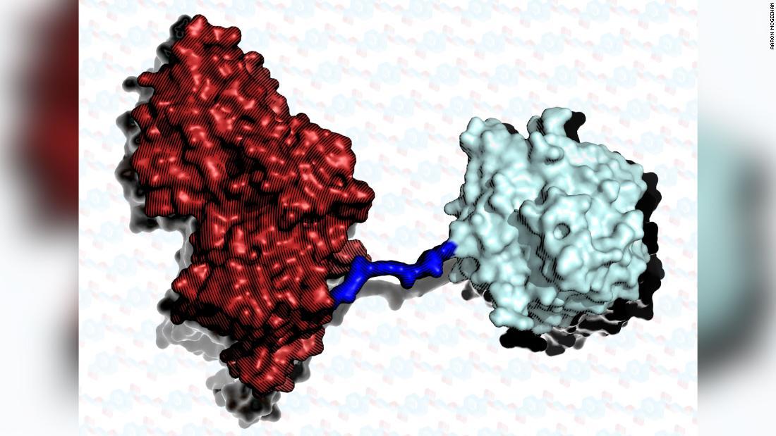 superenzima-plástico-contaminación-2