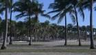 Miami en alerta de sanitaria por el Día del Trabajo