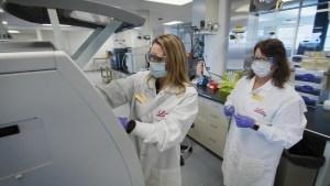 Eli Lilly frena pruebas de su tratamiento de anticuerpos