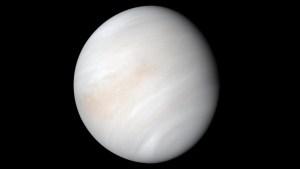 El planeta Venus pudo haber sido habitable