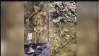Encuentran evidencias de masacre de la Edad del Hierro