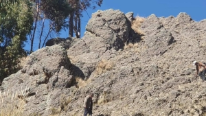 Roca parecida a Homero Simpson trae esperanza al turismo