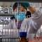Fauci: Una vacuna podría estar disponible en noviembre