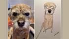 Retratos de mascotas ayudan a organizaciones benéficas