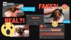 Cómo detectar información errónea en internet