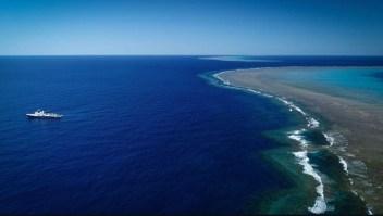 Descubren arrecife más alto que el Empire State