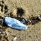 La pandemia representa una amenaza para los océanos