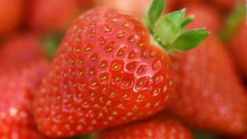 Las frutas con menos carbohidratos que debes comer