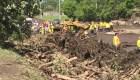 El Salvador: rescatistas buscan a desaparecido tras deslave