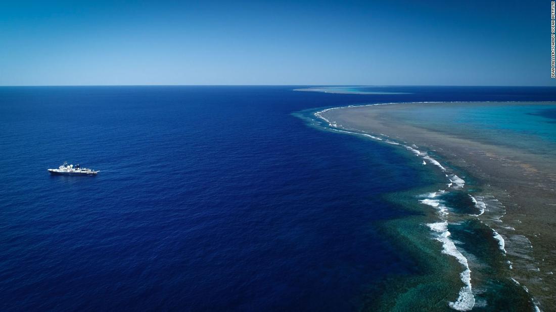 arrecife-coral-australia