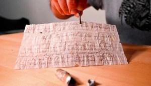 Después de 110 años hallan mensaje enviado con una paloma mensajera