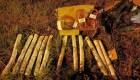 Encuentran dinamita en un autobús en Paraguay