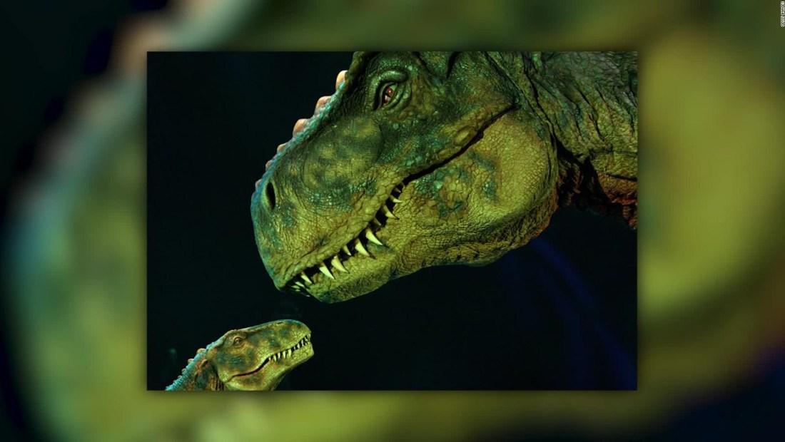 Estudio: sin asteroide, dinosaurios hubieran prosperado
