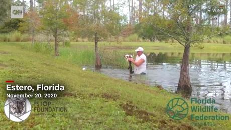 Hombre salva a su perro de ser devorado por un caimán