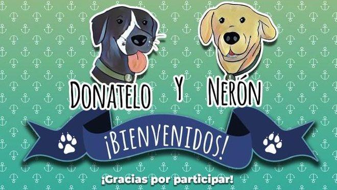 Perro rescatado por la Marina de México ya tiene nombre