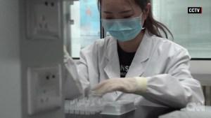 ¿Cómo funcionan las diferentes vacunas contra el coronavirus? Aquí un vistazo