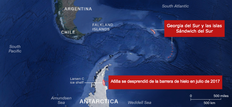 iceberg-choca-ecosistema (1)