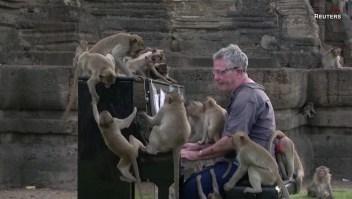 monos musica classica
