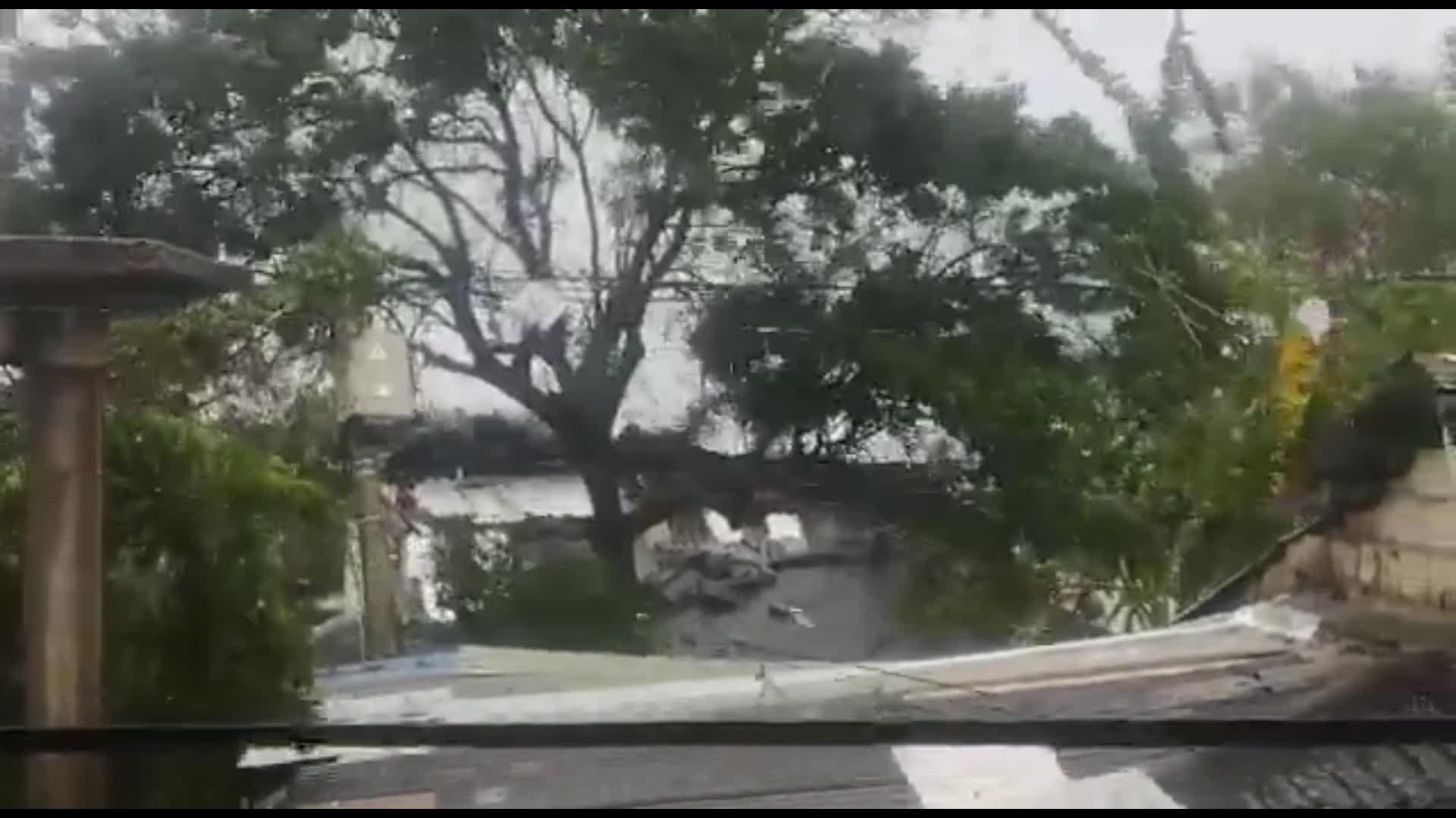 Aeronáutica Civil de Colombia cierra operaciones en aeropuerto de San Andrés por huracán Iota | CNN