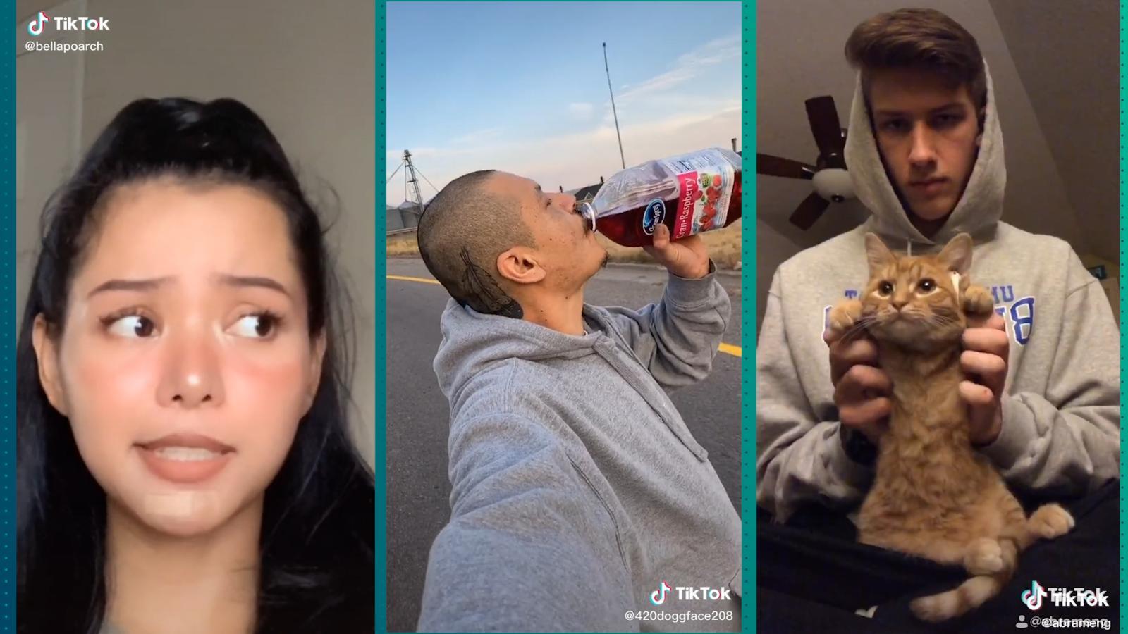 Mira los TikToks más virales en 2020   Video