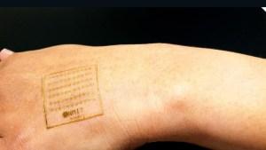 La nueva piel artificial que puede sentir dolor