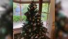 Curiosa koala adorna un árbol de Navidad en Australia