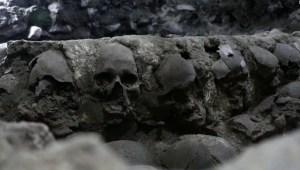Cráneos encontrados pertenecerían a humanos sacrificados