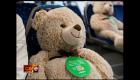 Estos osos mantienen el distanciamiento social