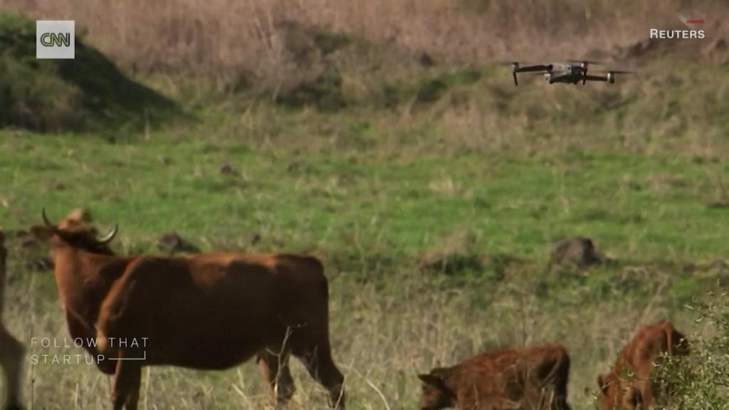 Los drones y su uso en la ganadería